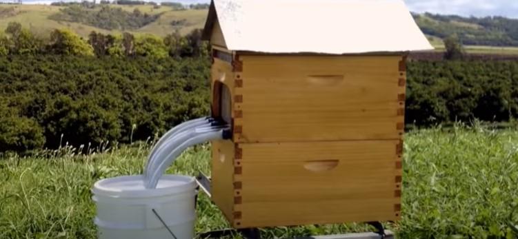 革命的な巣箱